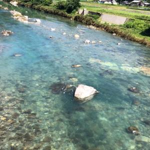 河川情報 東橋周辺