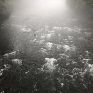 河川状況…高水安定