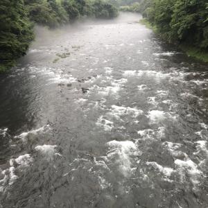 河川状況…高水安定です