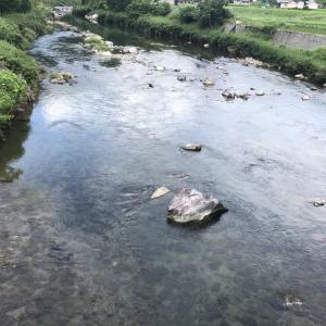 河川情報…ジリジリと減水