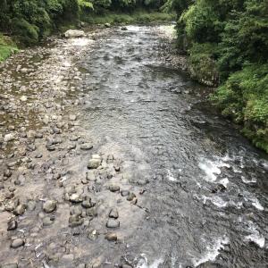 河川情報…平水です