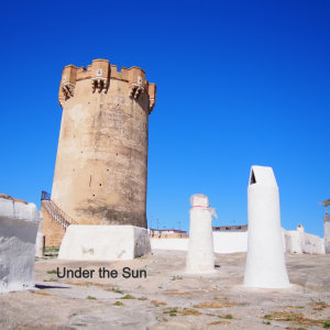 スペイン映画のロケ地:バレンシアで「ペイン・アンド・グローリー」のペネロペ・クルスの役になりきる!