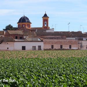 コロナ規制で週末市外移動禁止:バレンシア市内で農村ホッピング!