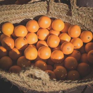 スペイン・バレンシアで街路樹のオレンジを収穫する機械がすごい!