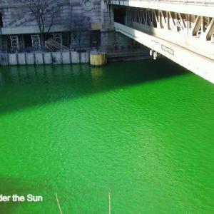 St. Patrick's Day:緑のドリンクでお祝い!