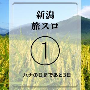 【新潟】回収時期!? 厳しい初日のハナハナ【旅スロ1日目~ハナの日3日前】