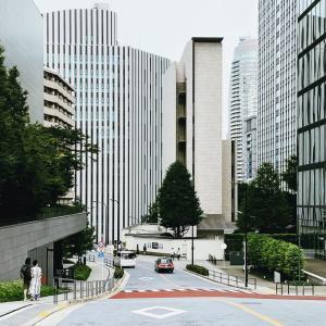 ビル街のシンボルツリー