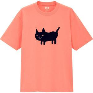 玄米尊師とユニクロがコラボ なんかニュッとか言いそうな猫のTシャツを発売