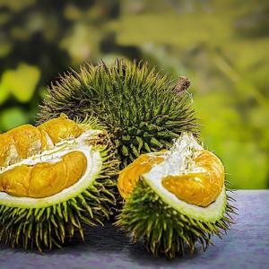 マレーシアでドリアンをおいしく食べれるお店紹介!ドリアン7種の味の特徴と食べ方まとめ