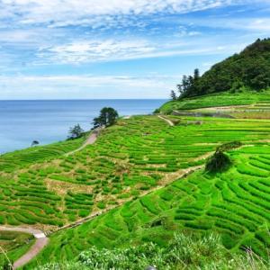 はじめての北陸!おすすめコース2泊3日、富山、金沢、和倉温泉の旅
