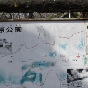 千葉県・茂原公園