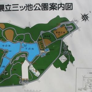 神奈川・三ッ池公園