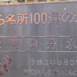 新潟県・大河津分水
