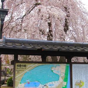 長野県・臥竜公園