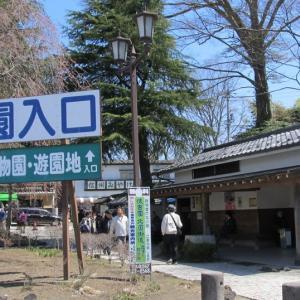 長野県・小諸城址懐古園