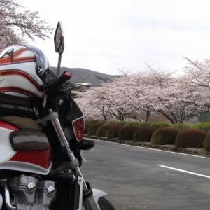 静岡県・富士霊園