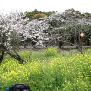 高知県・鏡野公園