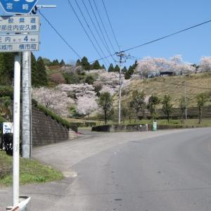 宮崎県・母智丘公園