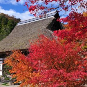 秋本番の京都の過ごし方
