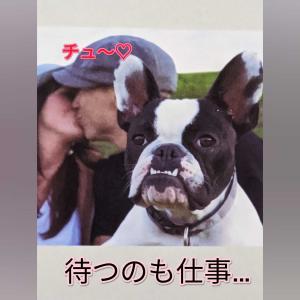 クロねこ(ΦωΦ)のお悩み♡