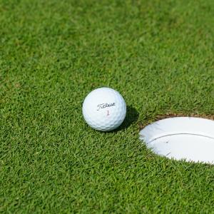 大きいサイズのゴルフウェア レディース セットアップ