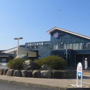 【浜田】『はまだお魚市場』商業棟にイタリアン・中華・魚介メシ・ビアスタンドなど飲食4店舗がオープン