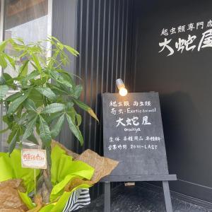 【米子】爬虫類専門店『大蛇屋』さんが西倉吉町に2021年8月16日オープン