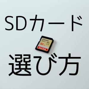 【初心者向け】デジタル一眼カメラにぴったりなSDカード3選!選び方も解説