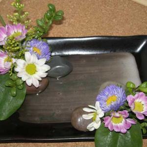 100均で買った和風の平皿に小菊をアレンジメント~和風のお庭を再現できたかな?