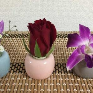【無印良品の歯ブラシスタンド活用法】一輪挿しの花瓶にしてお花を飾ってみた♪