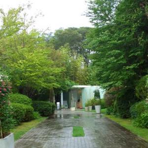 クレマチスの丘は9月も二番花が見頃! 雨の中、睡蓮も咲く美術館の庭園を花散歩♪