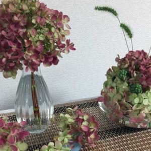 切り花の【秋色アジサイ】はボリュームたっぷり!小分けしていろいろな花瓶にアレンジメント♪