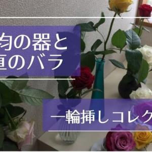 100均には一輪挿しの花瓶になる器がいっぱい!産地直送のバラを飾って楽しんでみた