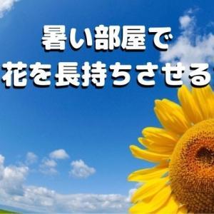 締め切った家や夏など、暑い部屋で切り花を長持ちさせる方法(それでも飾りたいですものね♪)