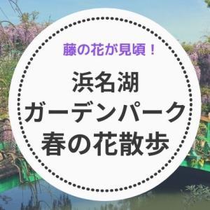 浜名湖ガーデンパークを春の花散歩:藤が見頃!黄色や白の樹木の花や色とりどりの草花で一杯の園内