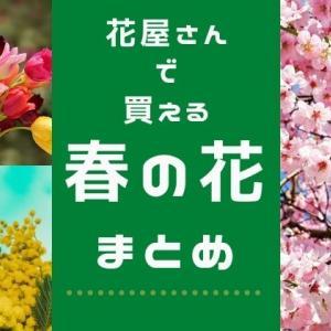 春の切り花:お花屋さんで買えるオススメはこれ!草花から枝ものまで