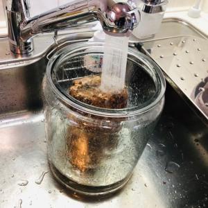 浄水器一体型蛇口の交換