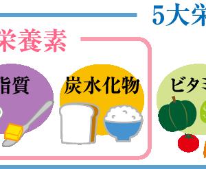 3大栄養素その①(炭水化物、脂質)