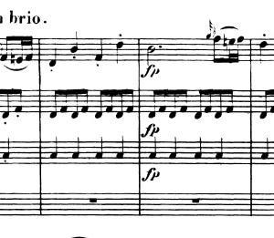 ベートーヴェン:弦楽四重奏曲 第6番 変ロ長調 作品18の6