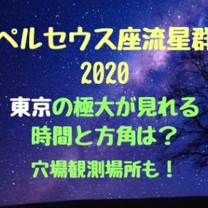 ペルセウス座流星群2020東京の極大が見れる時間と方角は?穴場観測場所も!