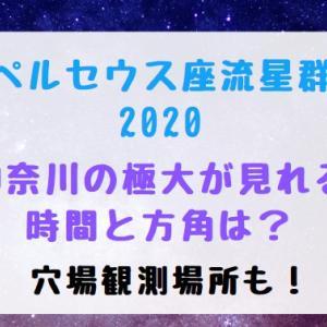 ペルセウス座流星群2020神奈川の極大が見れる時間と方角は?穴場観測場所も!