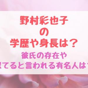 野村彩也子の学歴や身長は?彼氏の存在や似てると言われる有名人は?