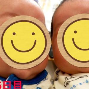 生後56日目の双子の様子
