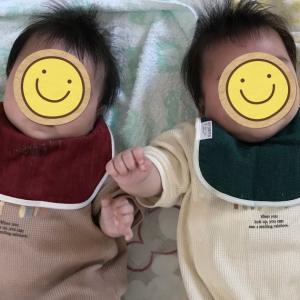 生後5ヶ月の双子の様子
