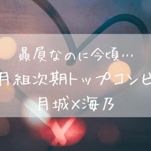 贔屓なのに今頃…月組次期トップコンビ月城×海乃