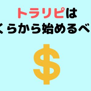 トラリピ初心者はいくらからできる?30万円以下でも可能な理由を解説