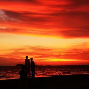南国の夕景