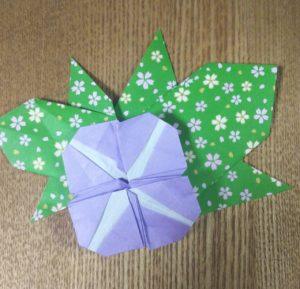 【折り紙】朝顔【カンタン!小学生でも作れる!】夏・花のおりがみ