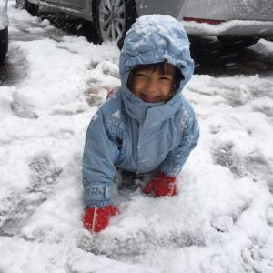 大雪に大興奮&今回もオチがあった夫