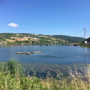 湖沿いの公園